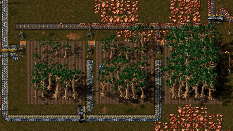 Zone de Plantation Avec un